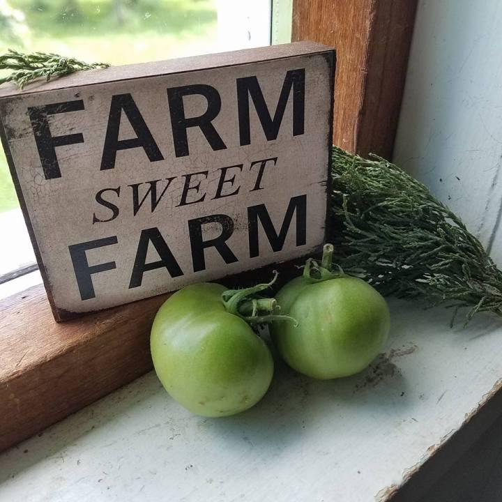 Buying a Farm