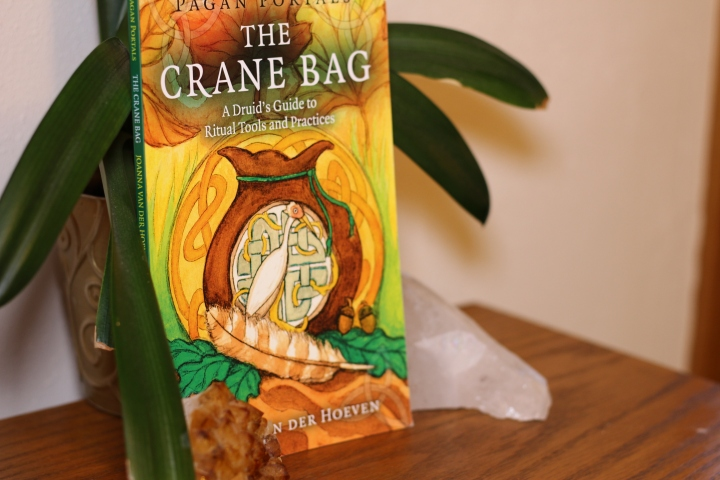 Book Review: The Crane Bag by Joanna Van Der Hoeven