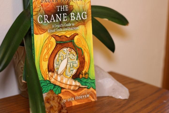 Book Review: The Crane Bag by Joanna Van DerHoeven