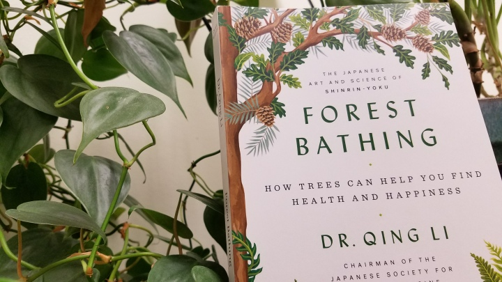 Forest Bathing by Dr. QuingLi