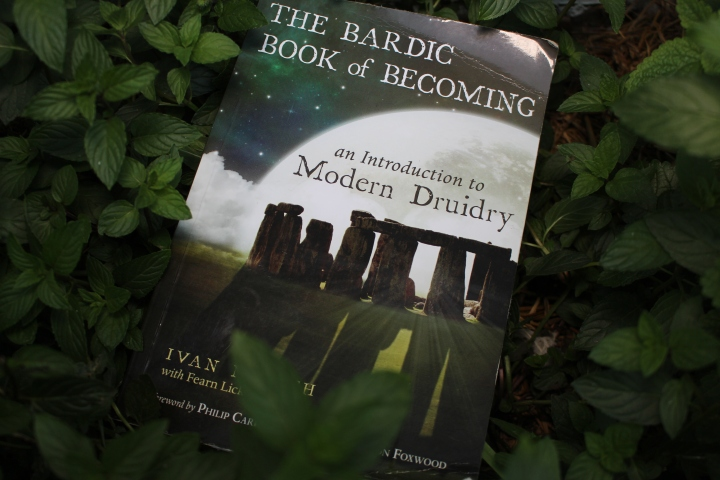 The Bardic Book of Becoming by Ivan McBeth